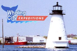 Whaling City Launch Service, Inc.